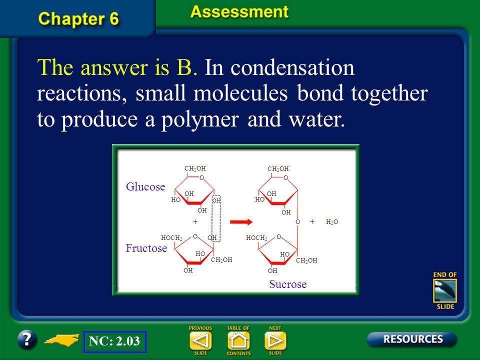 The answer is B. In condensation reactions, small molecules bond together to produce a polymer and water.