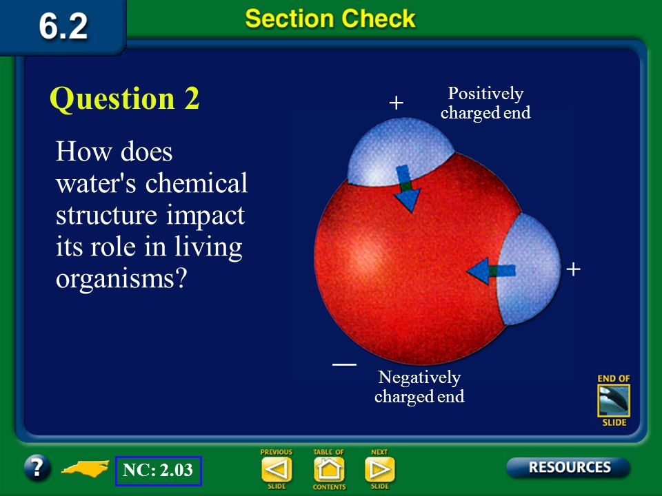 Question 2 Positively charged end. + How does water s chemical structure impact its role in living organisms