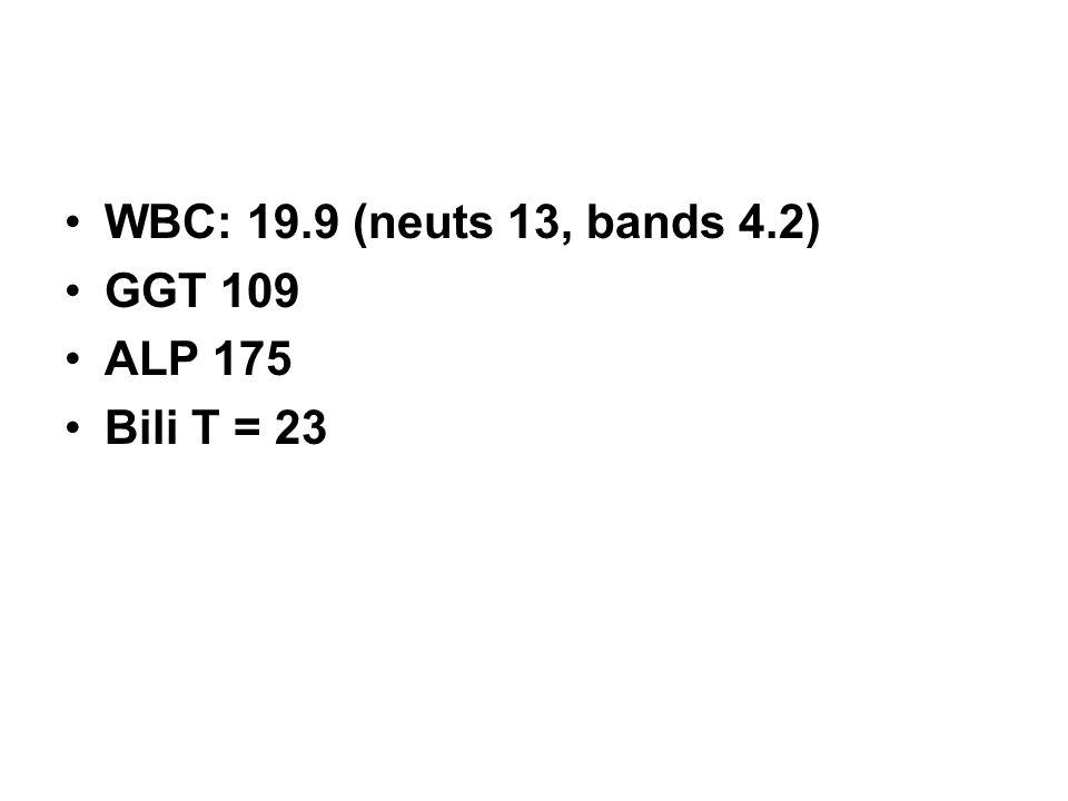 WBC: 19.9 (neuts 13, bands 4.2) GGT 109 ALP 175 Bili T = 23
