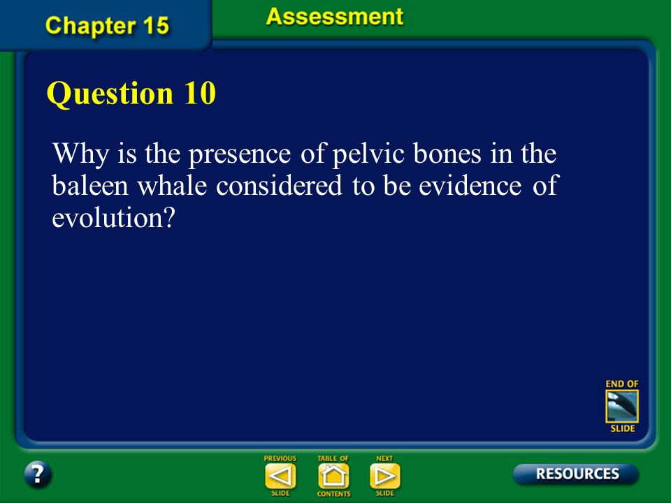 Question 10 Why is the presence of pelvic bones in the baleen whale considered to be evidence of evolution