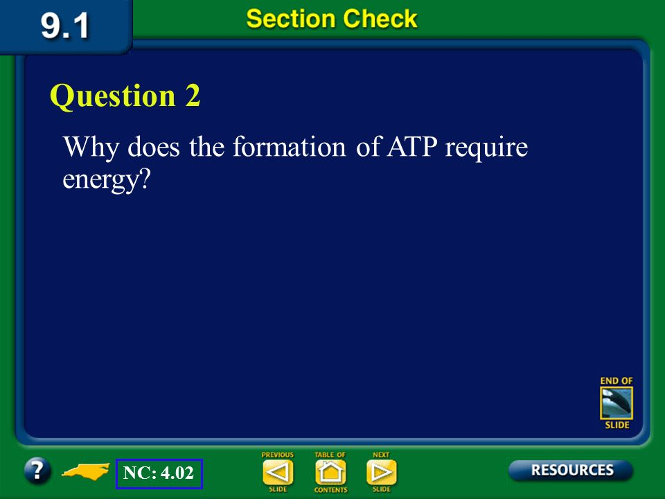 Question 2 Why does the formation of ATP require energy NC: 4.02