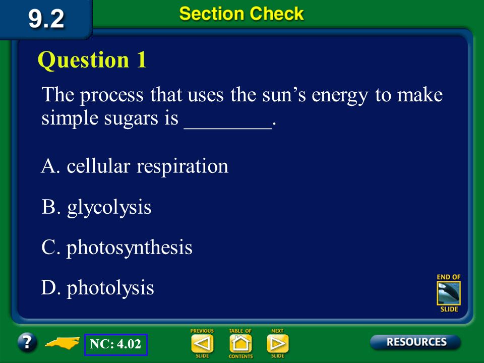Question 1 The process that uses the sun's energy to make simple sugars is ________. A. cellular respiration.