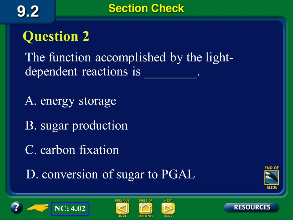 Question 2 The function accomplished by the light-dependent reactions is ________. A. energy storage.