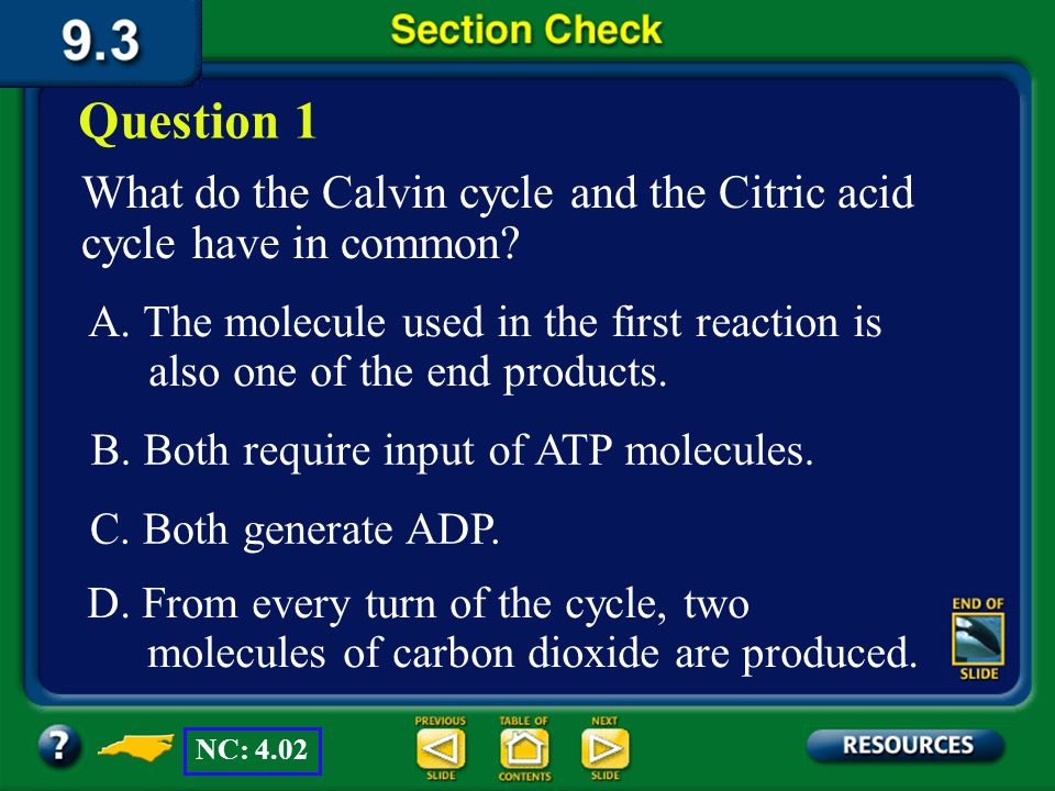 Question 1 What do the Calvin cycle and the Citric acid cycle have in common