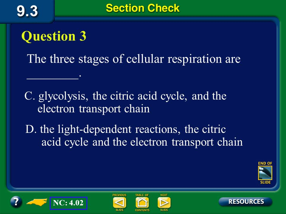 Question 3 The three stages of cellular respiration are ________.