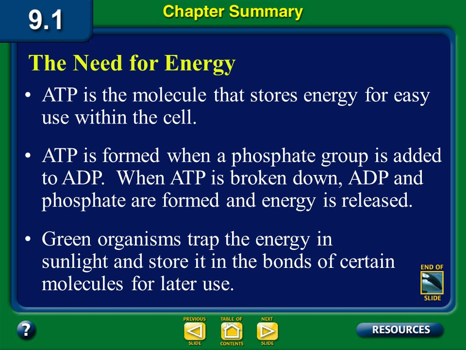 The Need for Energy ATP is the molecule that stores energy for easy use within the cell.