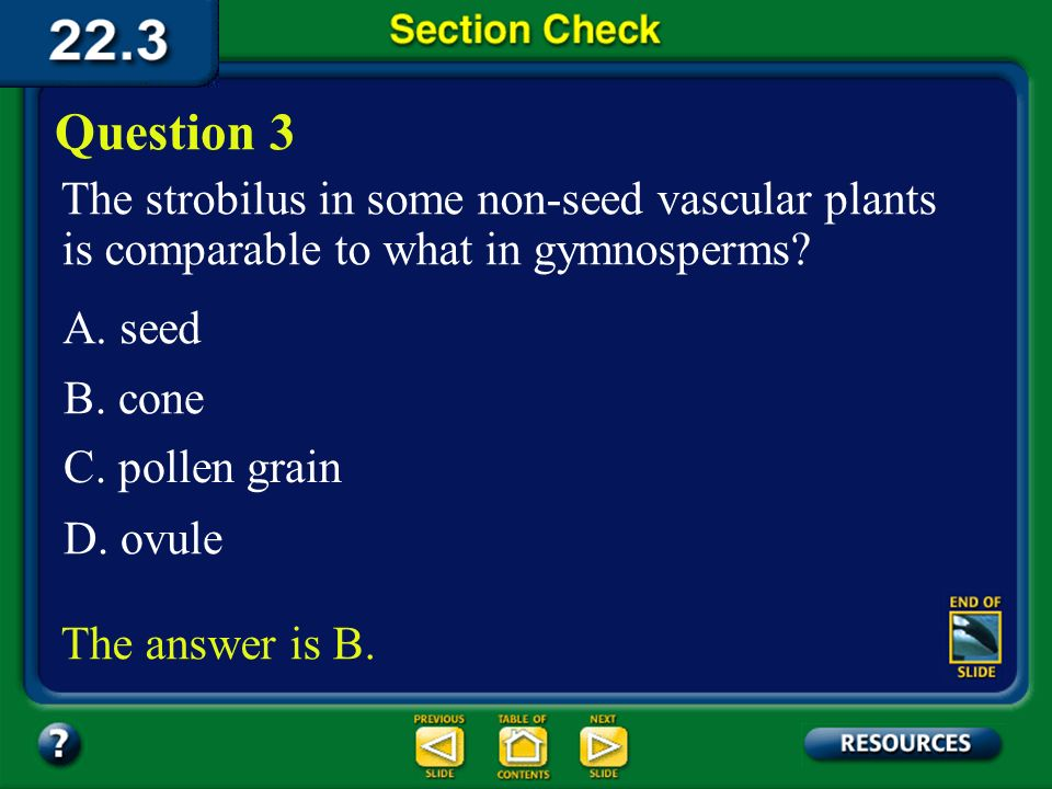Question 3 The strobilus in some non-seed vascular plants is comparable to what in gymnosperms A. seed.