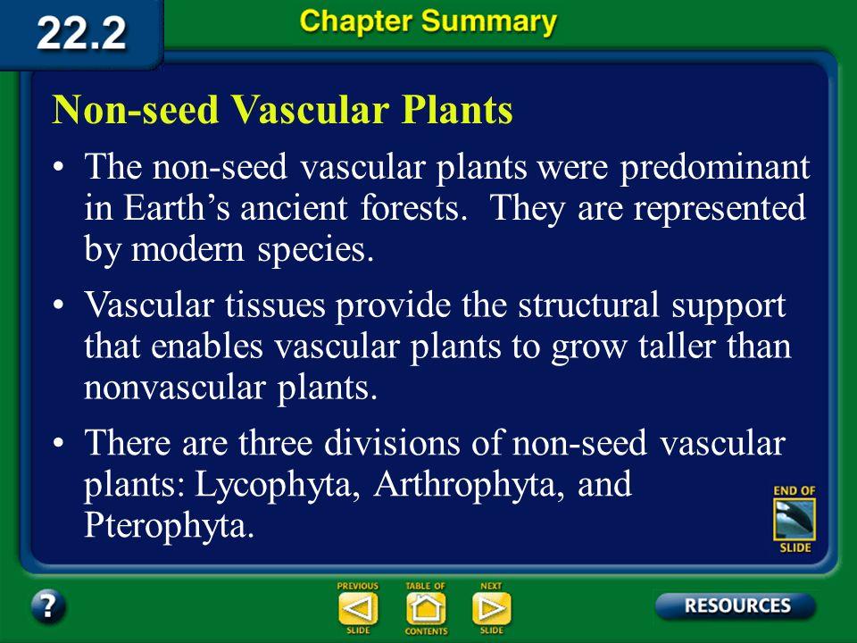 Non-seed Vascular Plants