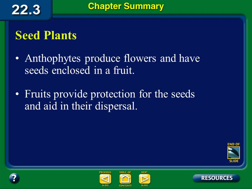 Seed Plants Anthophytes produce flowers and have seeds enclosed in a fruit. Fruits provide protection for the seeds and aid in their dispersal.