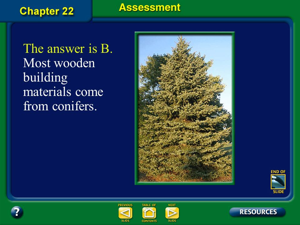 The answer is B. Most wooden building materials come from conifers.