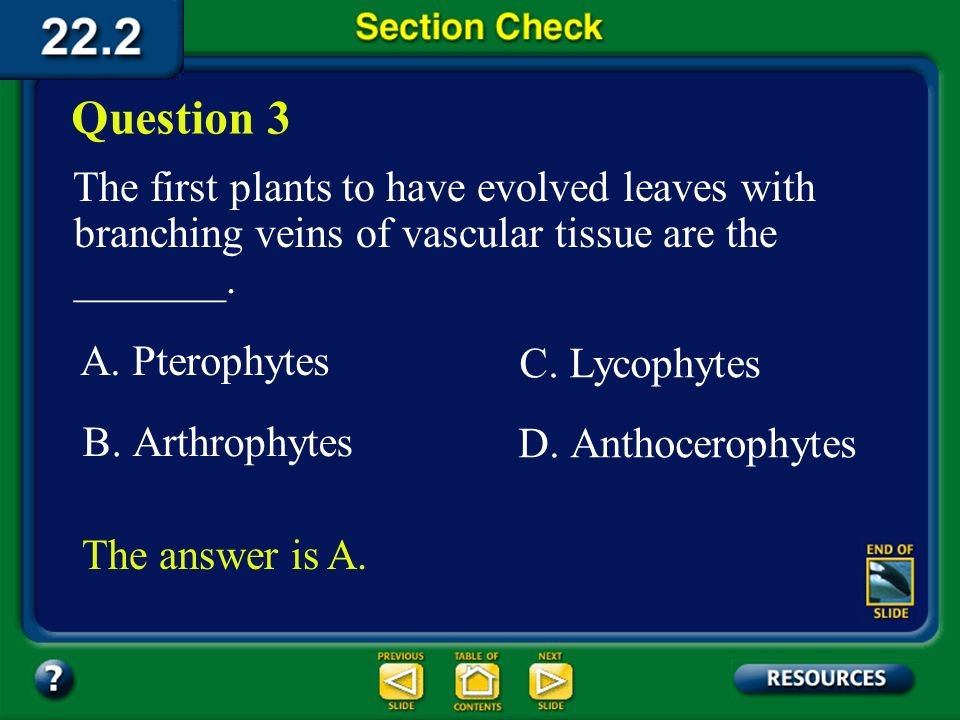 Question 3 The first plants to have evolved leaves with branching veins of vascular tissue are the _______.