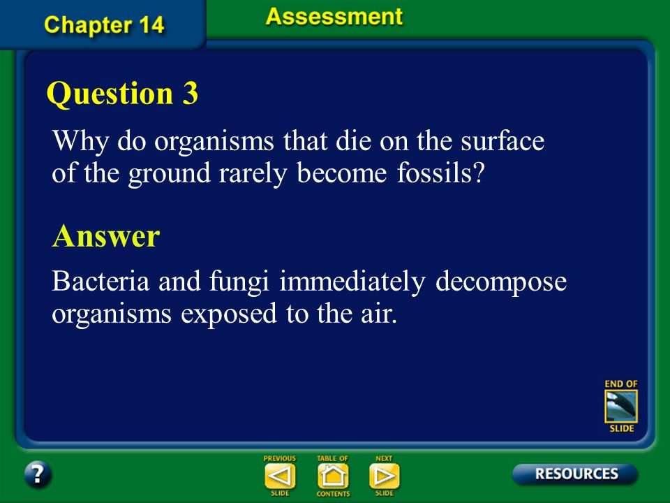 Question 3 Why do organisms that die on the surface of the ground rarely become fossils Answer.
