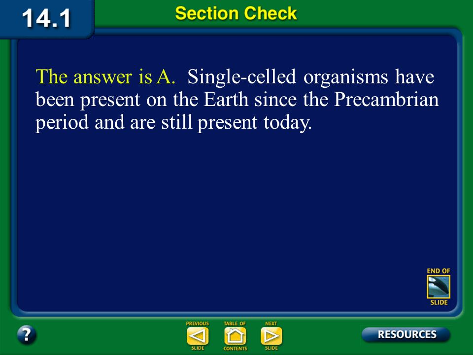 The answer is A. Single-celled organisms have been present on the Earth since the Precambrian period and are still present today.