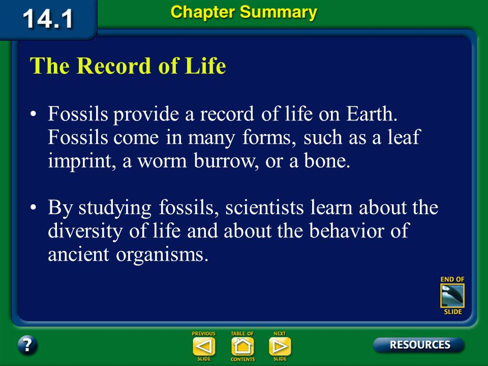 The Record of Life Fossils provide a record of life on Earth. Fossils come in many forms, such as a leaf imprint, a worm burrow, or a bone.