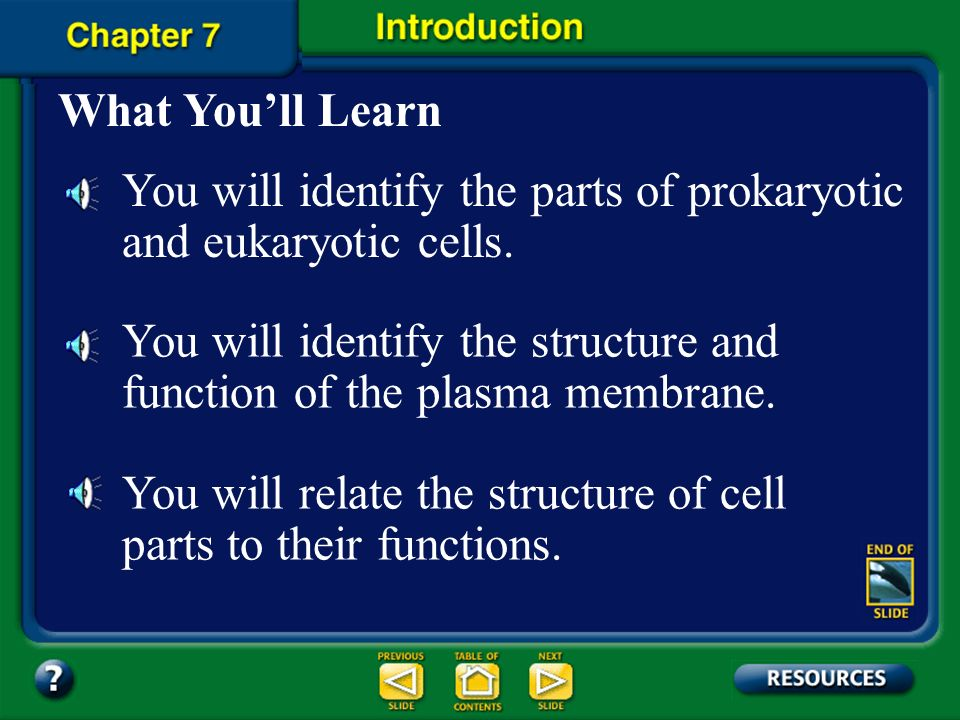 You will identify the parts of prokaryotic and eukaryotic cells.