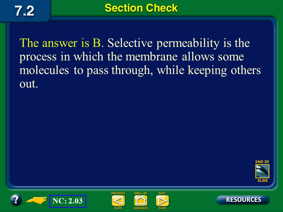 The answer is B. Selective permeability is the process in which the membrane allows some molecules to pass through, while keeping others out.