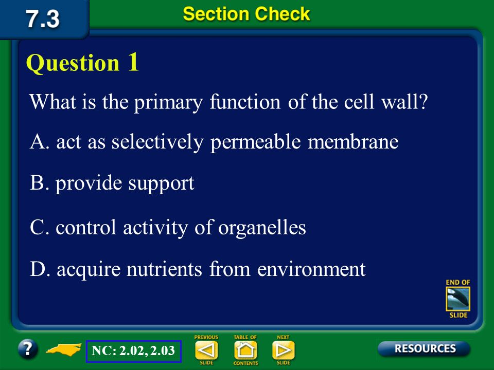 Question 1 What is the primary function of the cell wall