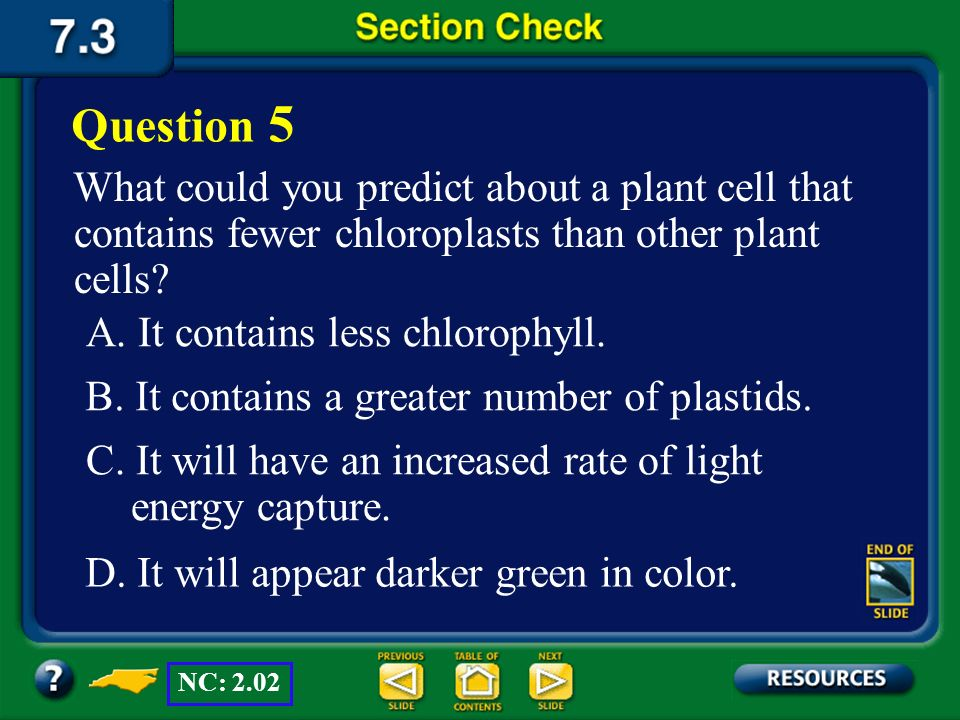 Question 5 What could you predict about a plant cell that contains fewer chloroplasts than other plant cells