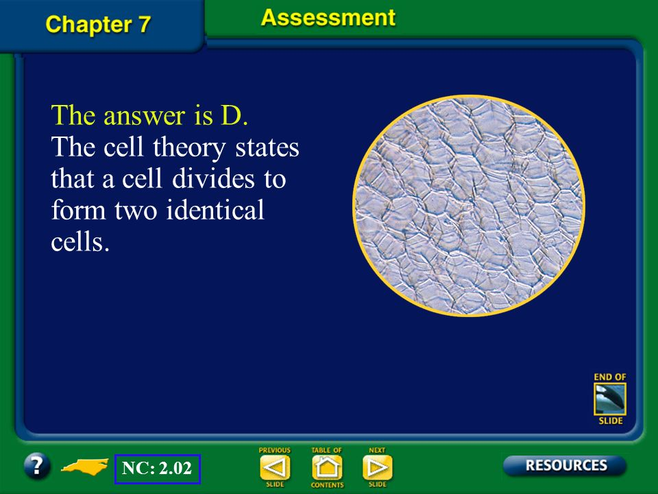 The answer is D. The cell theory states that a cell divides to form two identical cells.