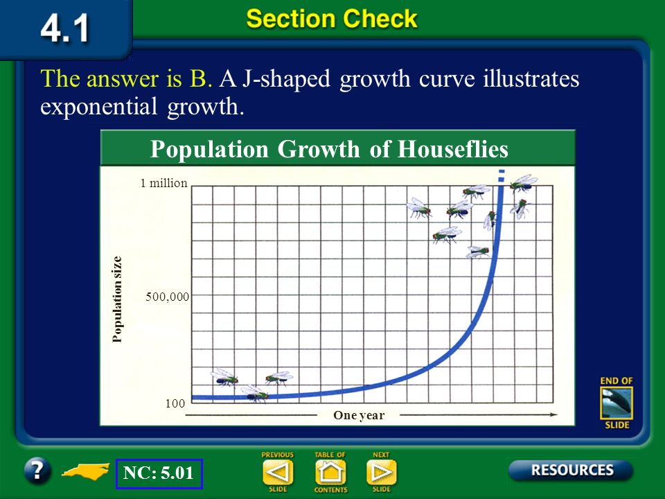Population Growth of Houseflies