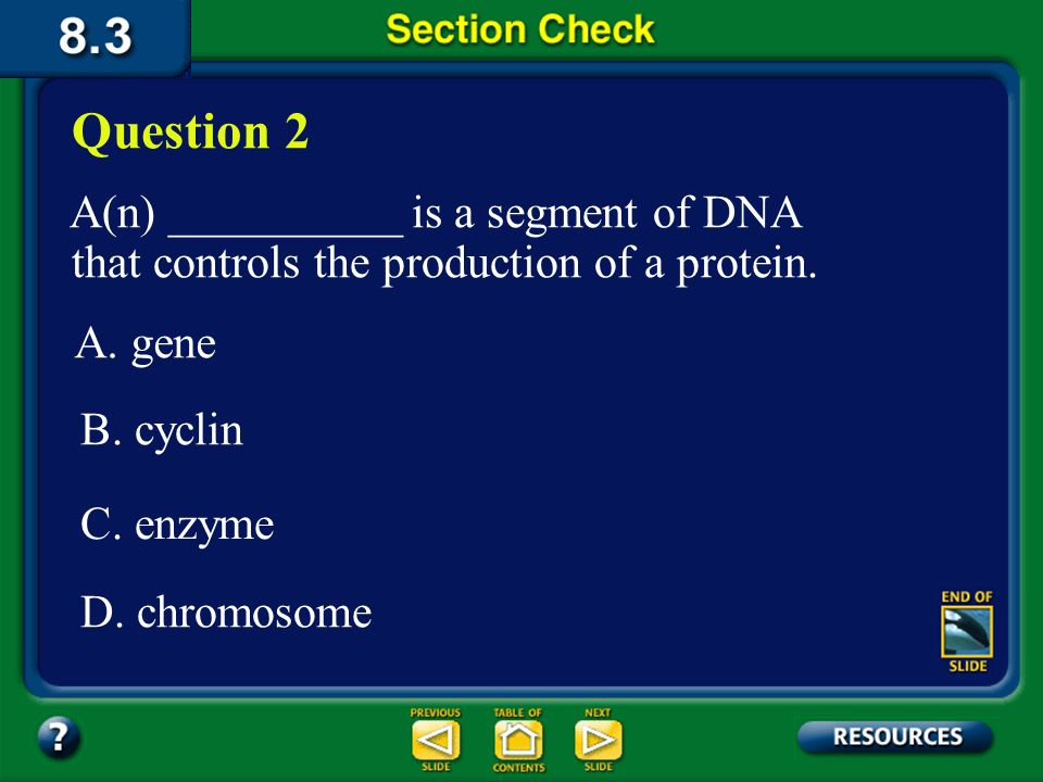 Question 2 A(n) __________ is a segment of DNA that controls the production of a protein. A. gene.
