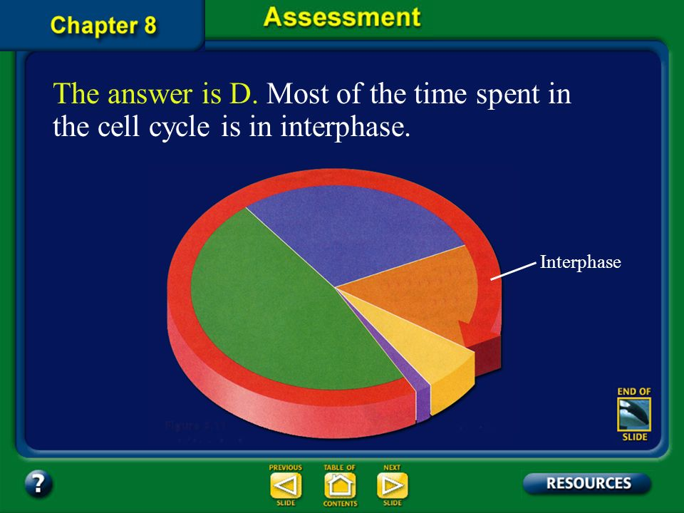 The answer is D. Most of the time spent in the cell cycle is in interphase.