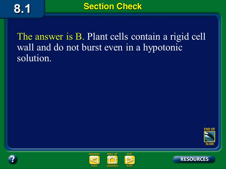 The answer is B. Plant cells contain a rigid cell wall and do not burst even in a hypotonic solution.