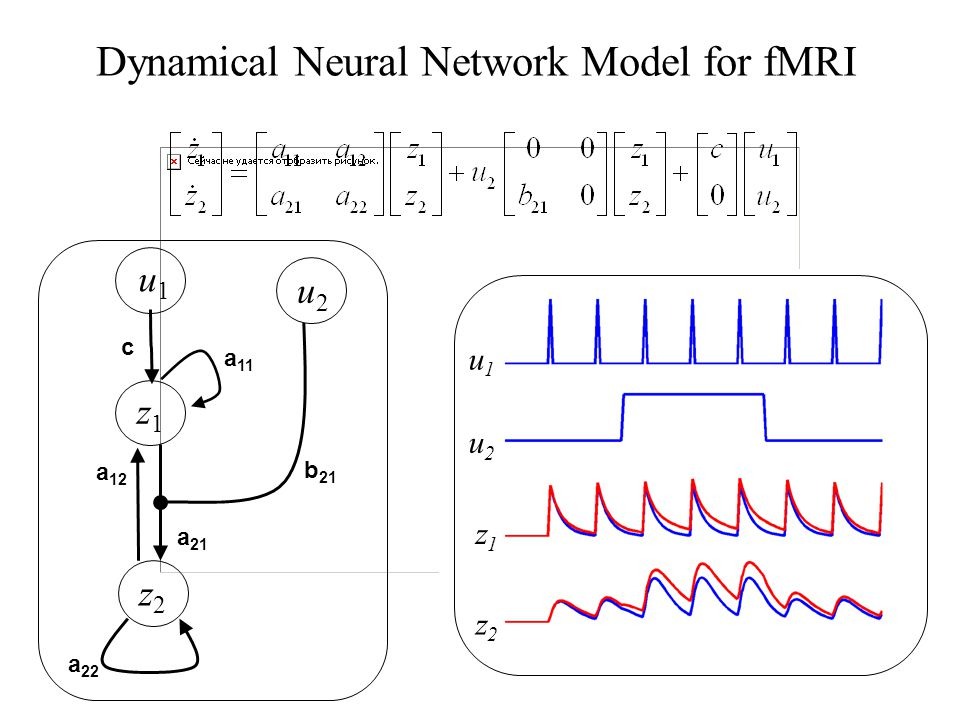 Dynamical Neural Network Model for fMRI