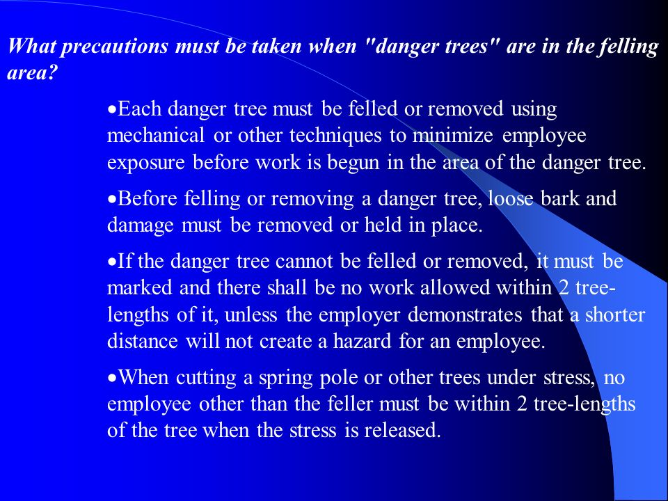 What precautions must be taken when danger trees are in the felling area