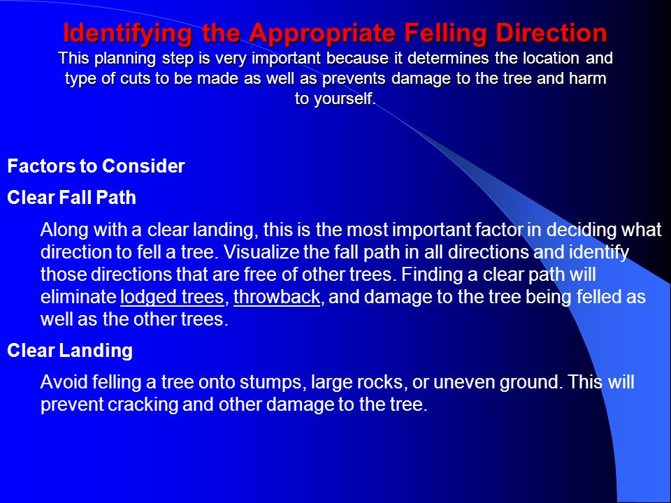 Identifying the Appropriate Felling Direction This planning step is very important because it determines the location and type of cuts to be made as well as prevents damage to the tree and harm to yourself.