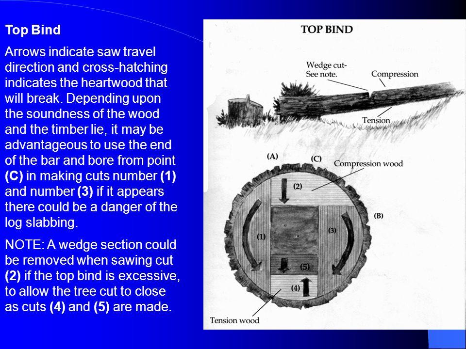 Top Bind