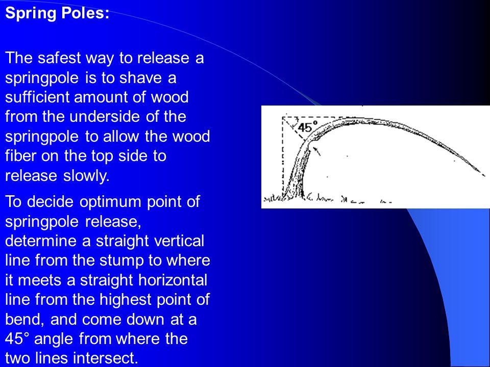 Spring Poles: