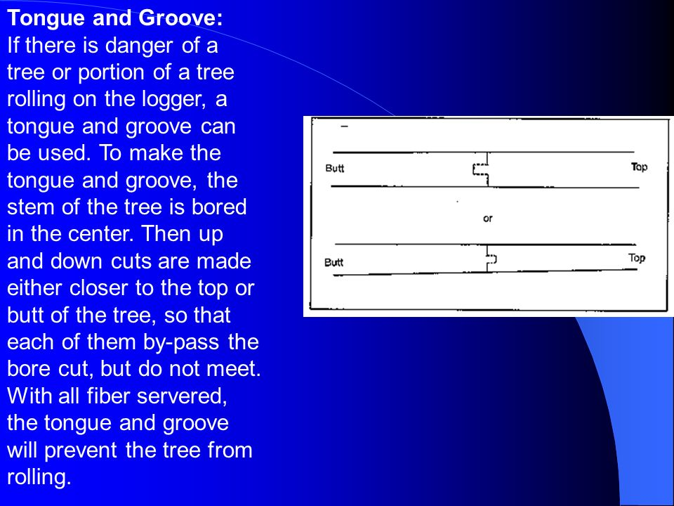 Tongue and Groove: If there is danger of a tree or portion of a tree rolling on the logger, a tongue and groove can be used.