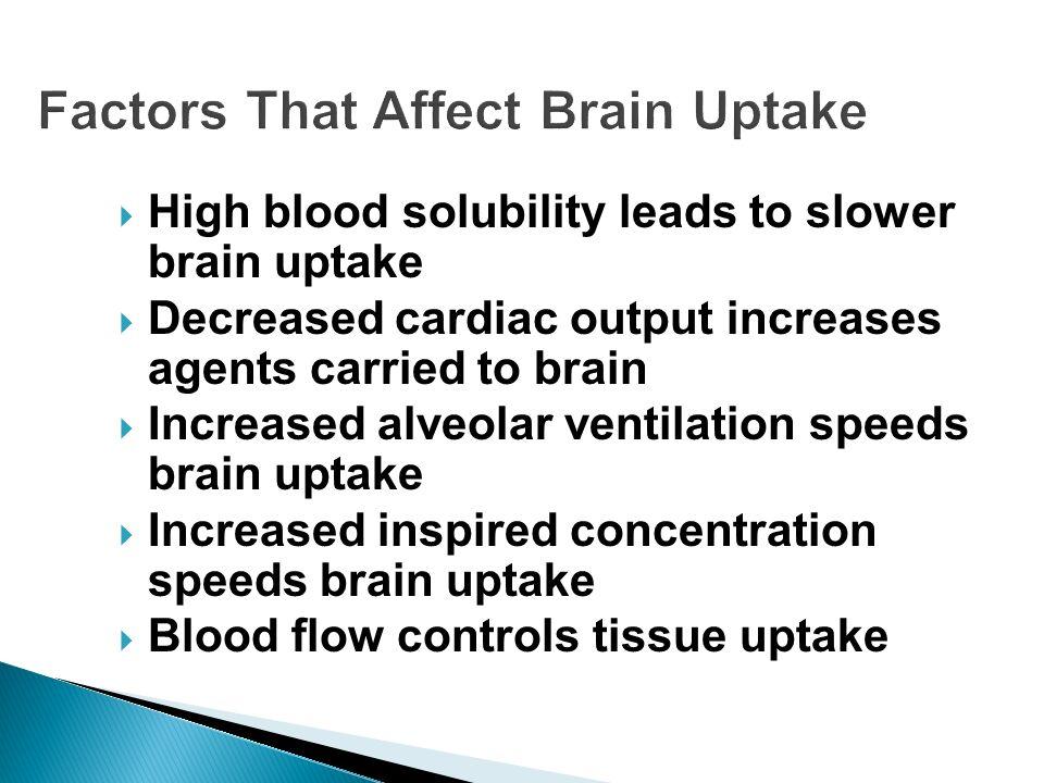 Factors That Affect Brain Uptake