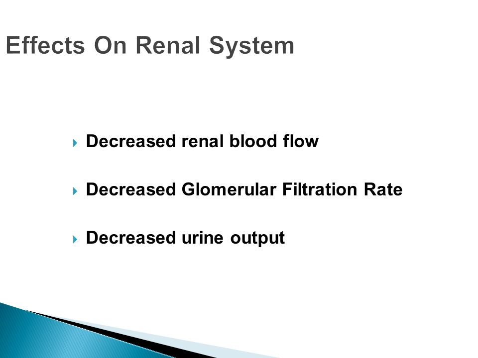 Effects On Renal System