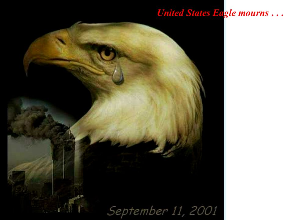 United States Eagle mourns . . .