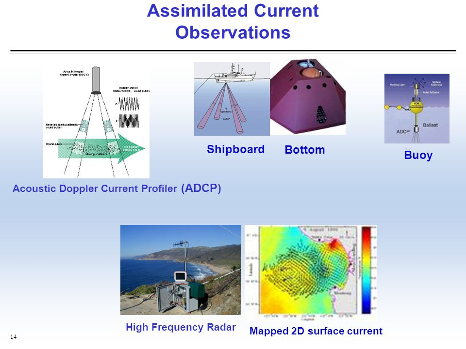 Assimilated Current Observations