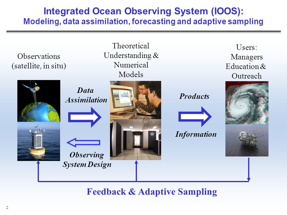 Feedback & Adaptive Sampling