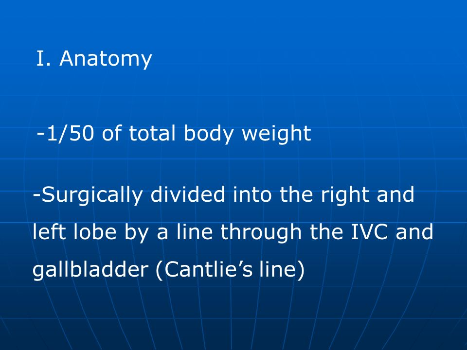 Anatomy -1/50 of total body weight. Surgically divided into the right and. left lobe by a line through the IVC and.