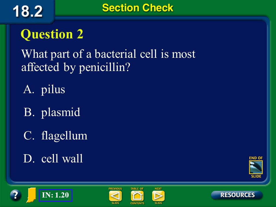 Question 2 What part of a bacterial cell is most affected by penicillin A. pilus. B. plasmid. C. flagellum.