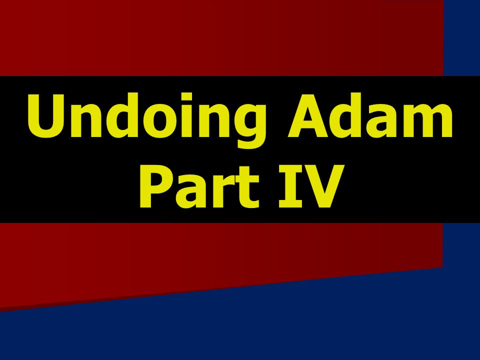 Undoing Adam Part IV