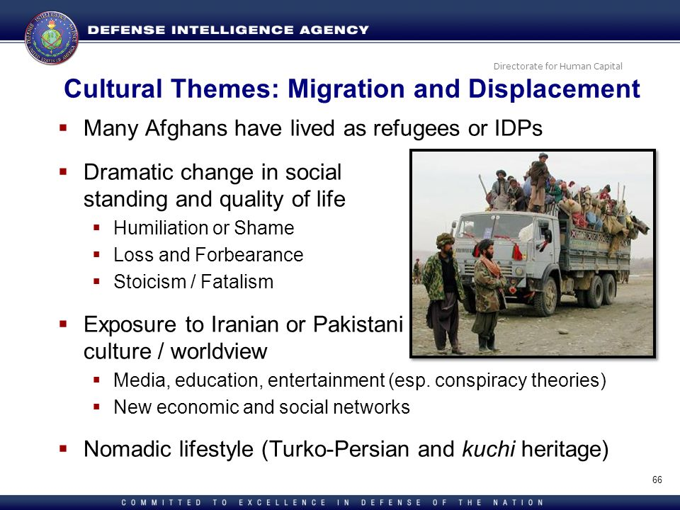 Cultural Themes: Migration and Displacement