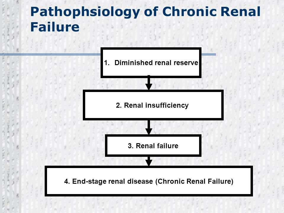 Pathophsiology of Chronic Renal Failure