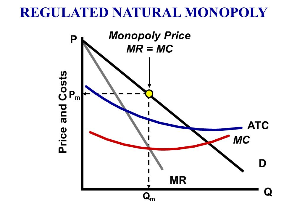 REGULATED NATURAL MONOPOLY