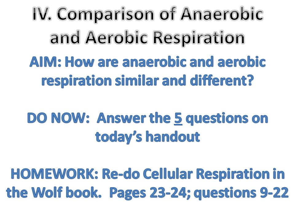 IV. Comparison of Anaerobic and Aerobic Respiration