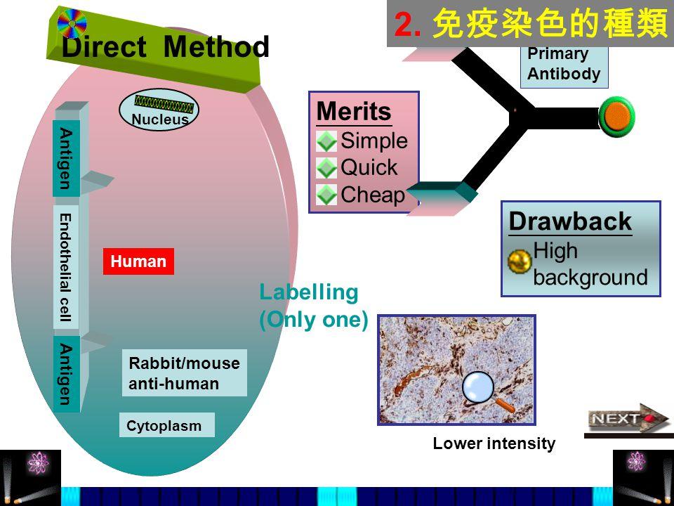 2. 免疫染色的種類 Direct Method Merits Drawback Simple Quick Cheap High