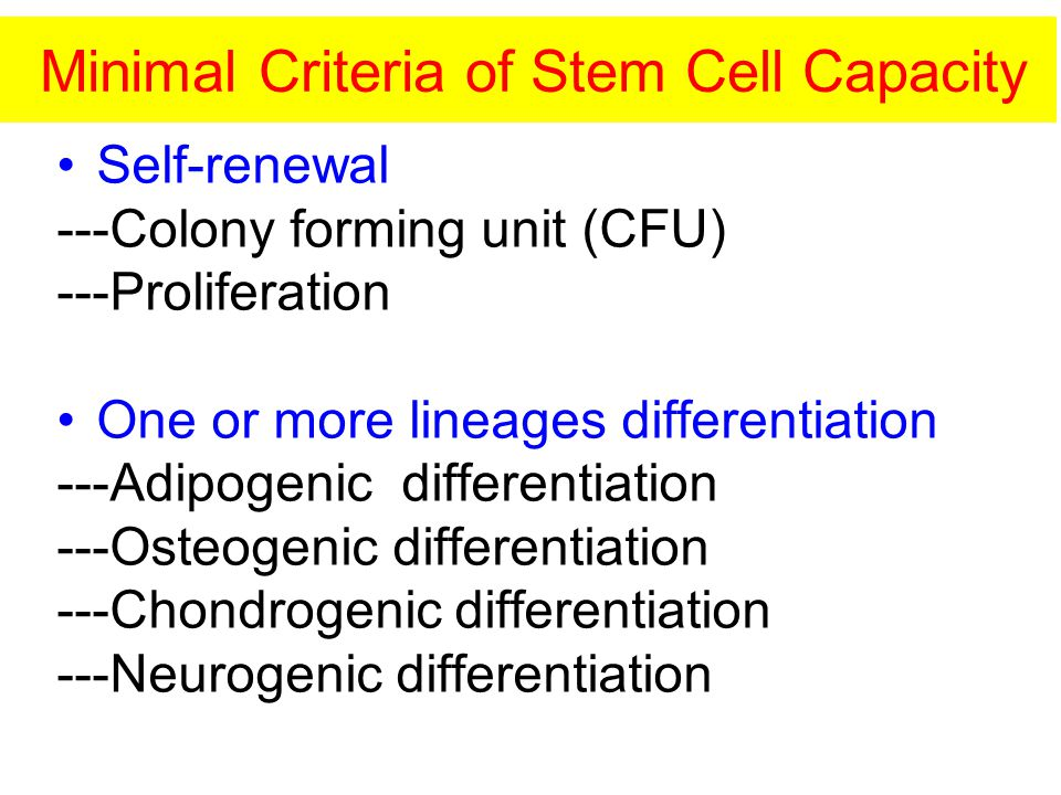 Minimal Criteria of Stem Cell Capacity