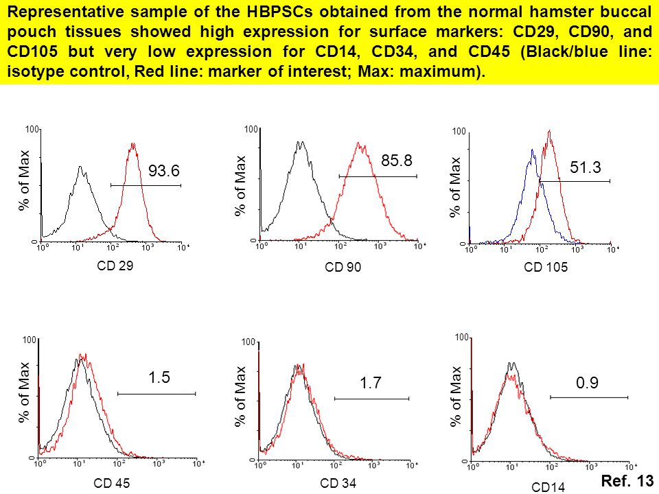 Representative sample of the HBPSCs obtained from the normal hamster buccal pouch tissues showed high expression for surface markers: CD29, CD90, and CD105 but very low expression for CD14, CD34, and CD45 (Black/blue line: isotype control, Red line: marker of interest; Max: maximum).