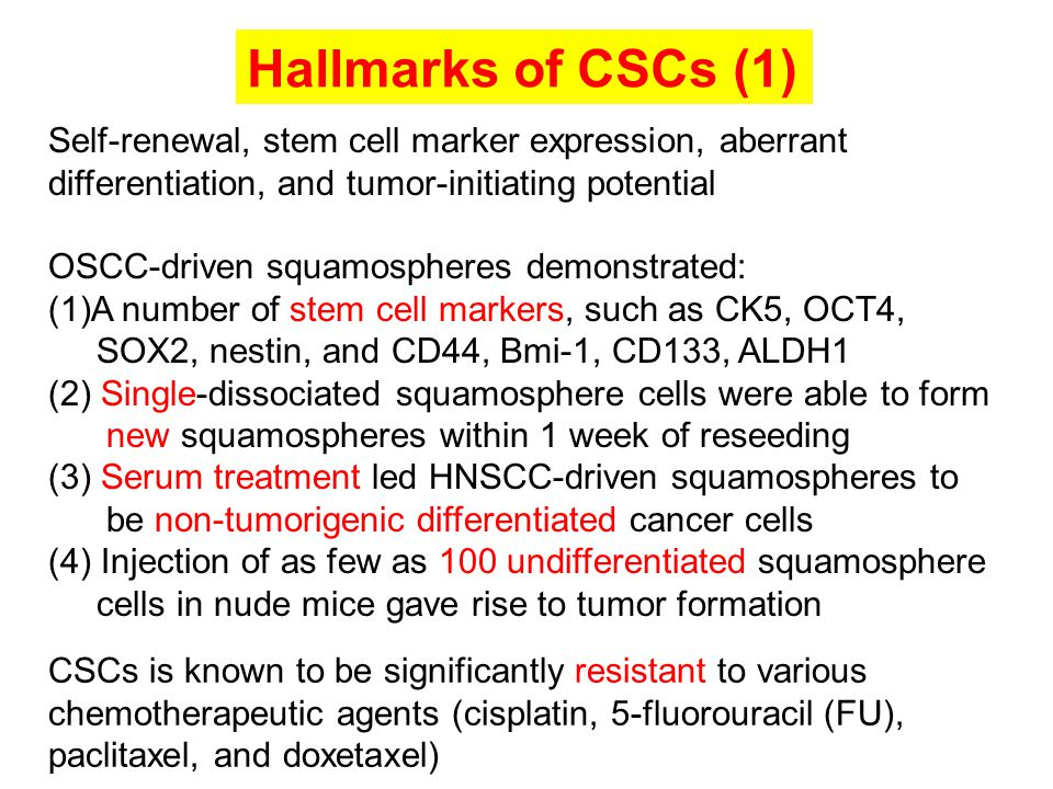 Hallmarks of CSCs (1) Self-renewal, stem cell marker expression, aberrant differentiation, and tumor-initiating potential.