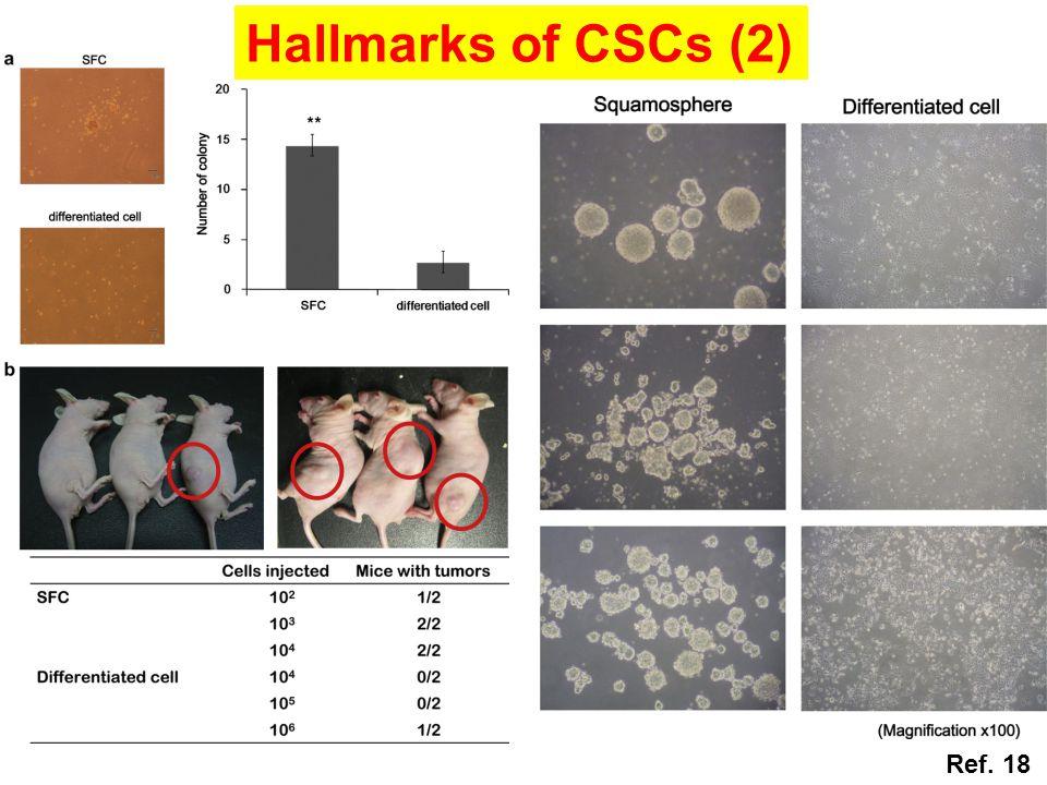 Hallmarks of CSCs (2) Ref. 18
